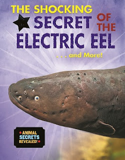https://www.amazon.com/Shocking-Secret-Electric-Secrets-Revealed/dp/0766087263/ref=tmm_hrd_swatch_0?_encoding=UTF8&qid=1506200481&sr=8-1