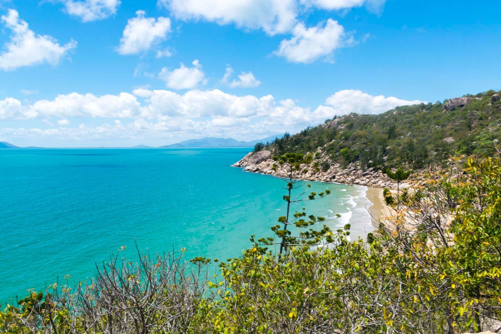 radical bay magnetic island