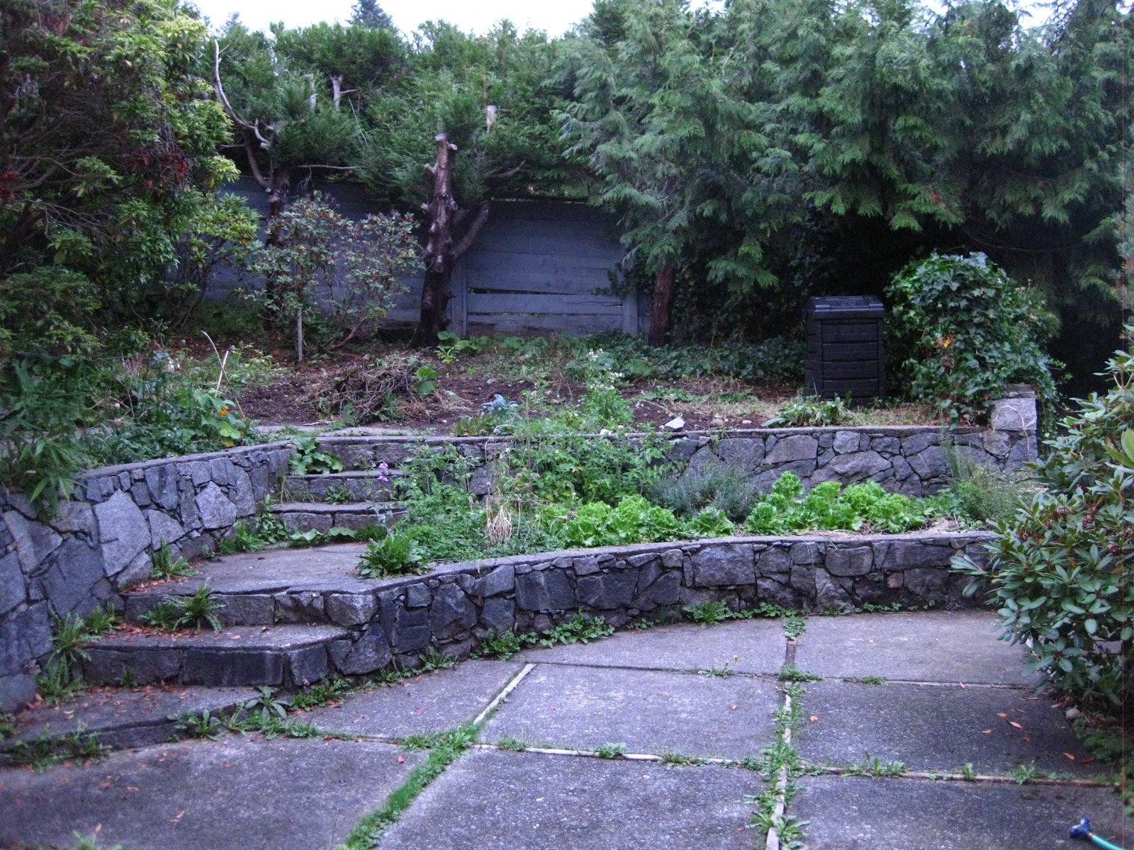 The Bicycle-Gardening Chronicles...: And a year (almost ... on Tiered Yard Ideas  id=20955
