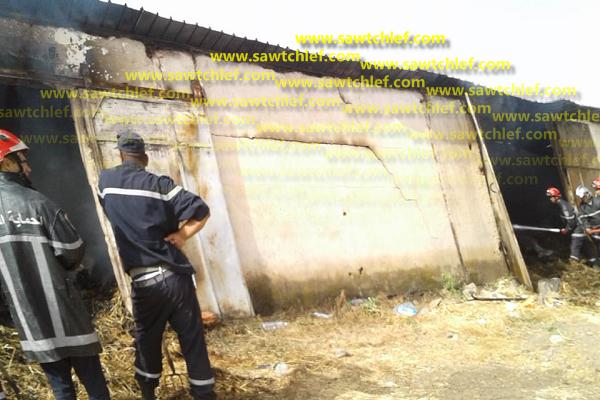 نشوب حريق بمستودعات تخزين الحبوب للمجموعات الفلاحية بسنجاس
