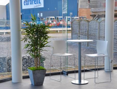 Kunstplanten huren of kopen (prijzen op aanvraag) voor bedrijven events feesten beurzen in Brussel Limburg Vlaams-Brabant Antwerpen Gent kunstmos bolmos