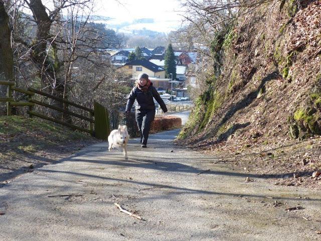 Eifel Urlaub Blumenthal Hund Ferienwohnung Winter Wanderung
