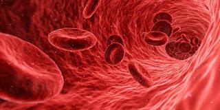 كيف اعالج نقص كريات الدم الحمراء