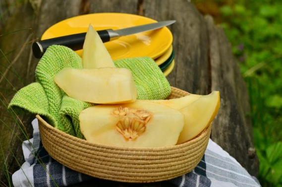 Muskmelon/ Cantaloupe/Kharbooja Benefits For Health, Skin,Hair