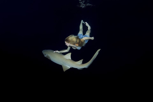 Model poses underwater with sharks to prove creatures are not dangerous