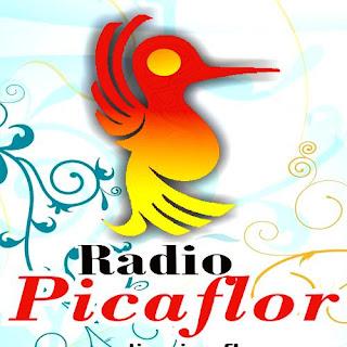 Radio Picaflor Peru