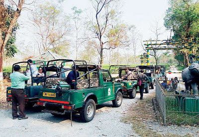 Gorumara National Park in the Dooars