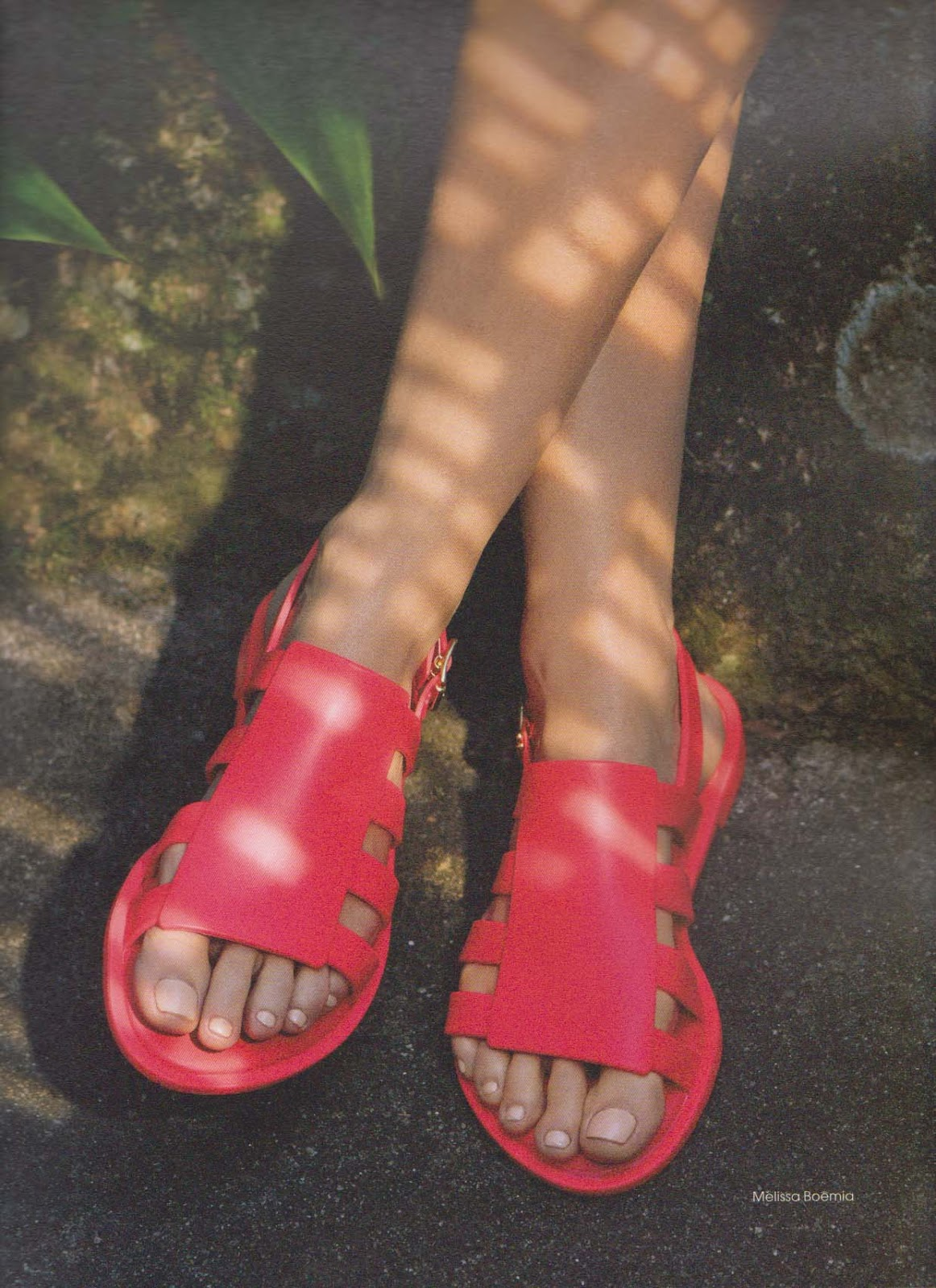 Moda E Styles Entretenimento Melissa Plastic Dreams