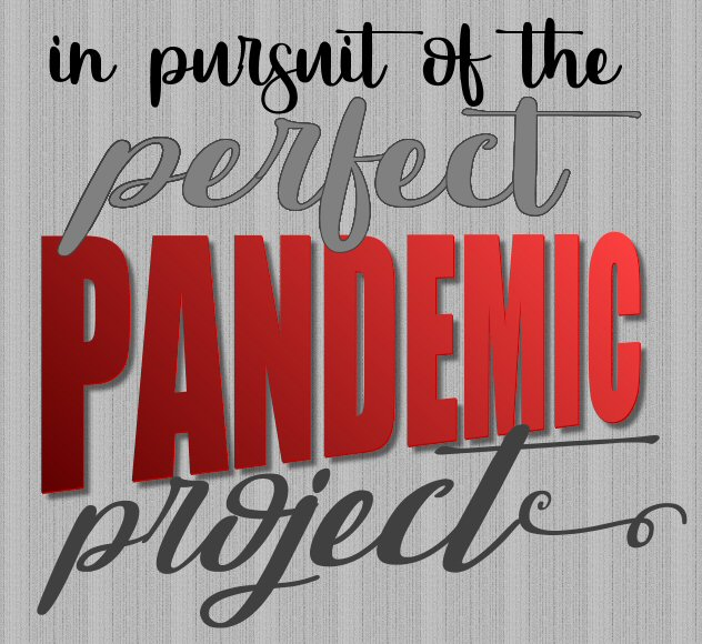 Non-Sewing Pandemic Projects > > >