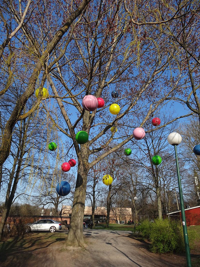 Funky tree in Djurgården