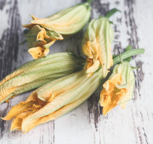 Ackermoment, eigene Ernte, Gefüllte Zucchiniblüten, ernten, Ackerhelden