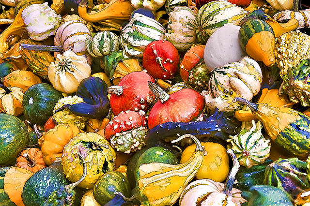 gourds, pumpkins, farmers market, veggies, vegetarian, vegan