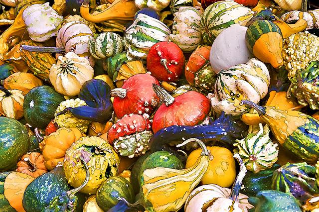gourds, pumpkins, farmers market, veggies, vegetarian, vegan