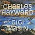 Charles Hayward, Gigi Masin – Les Nouvelles Musiques De Chambre Vol. 2 (Modern Classics Recordings, 2017)