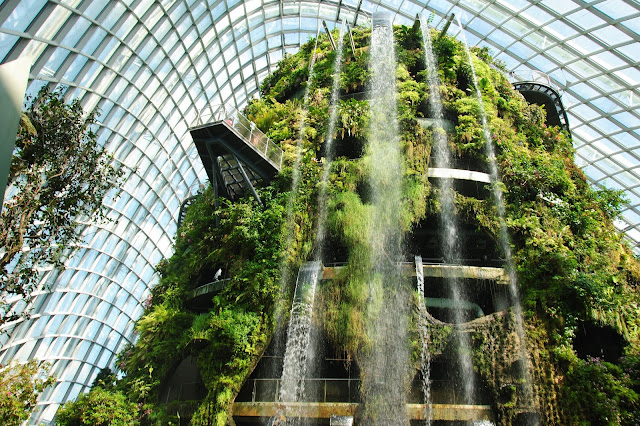 Cloud Forest w Gardens By The Bay