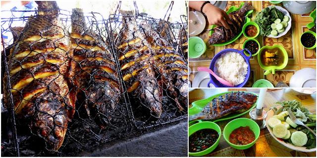 Ikan+Mujair+Kumbang+Danau+Ranau