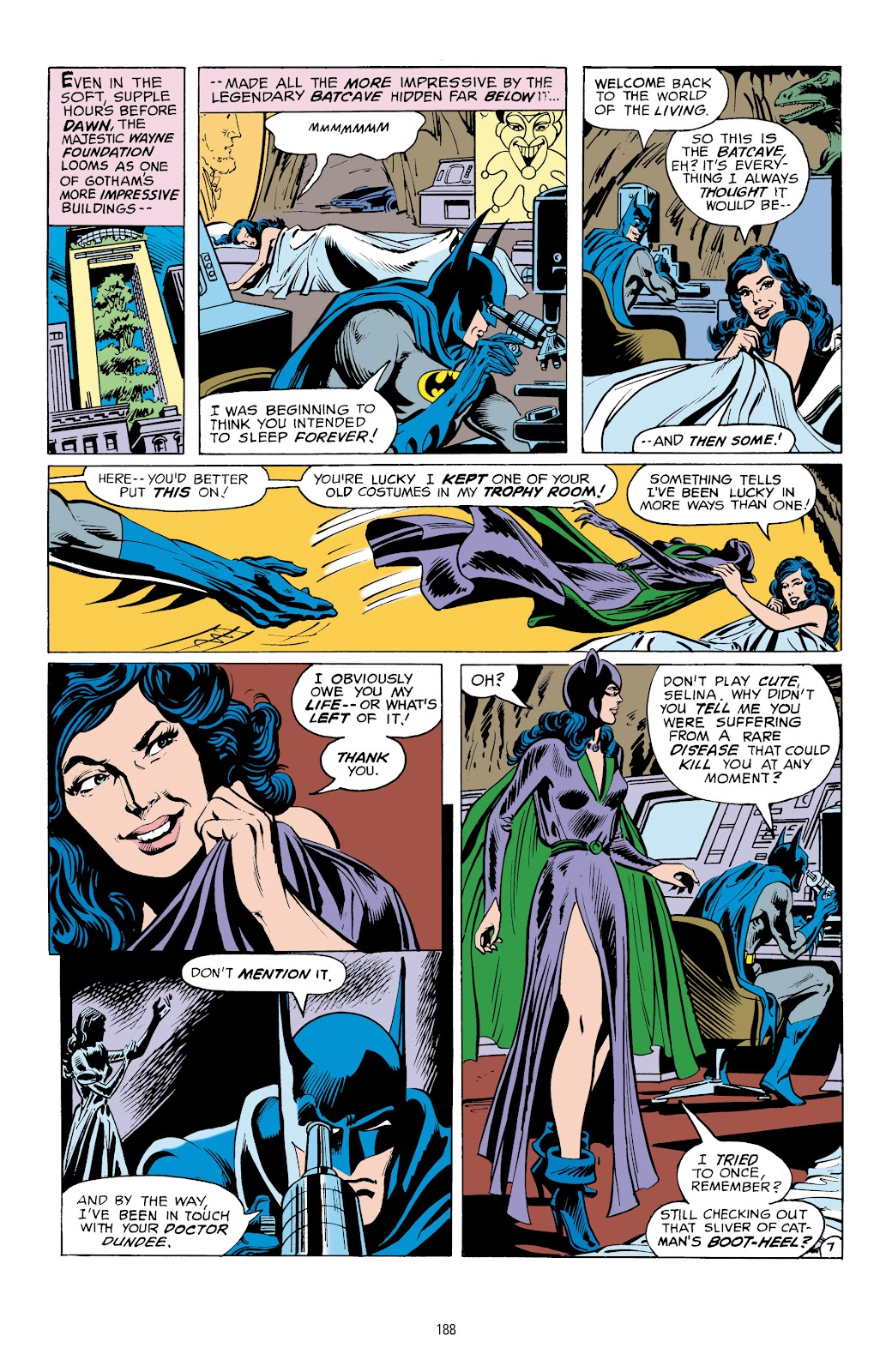 Read online Catwoman: A Celebration of 75 Years comic -  Issue # TPB (Part 2) - 89