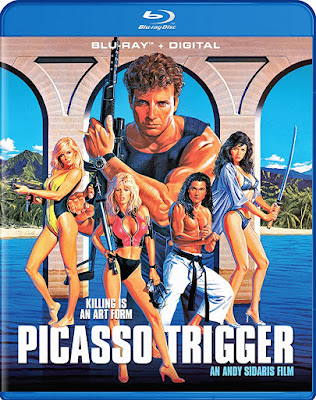 Picasso Trigger 1988 UNRATED Dual Audio BRRip 480p 300Mb x264