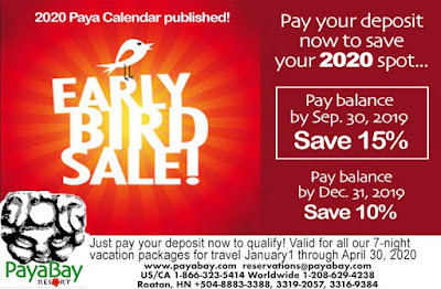 deals, specials, sale, early bird, paya bay resort, #payabay, #payabayresort, 2020,