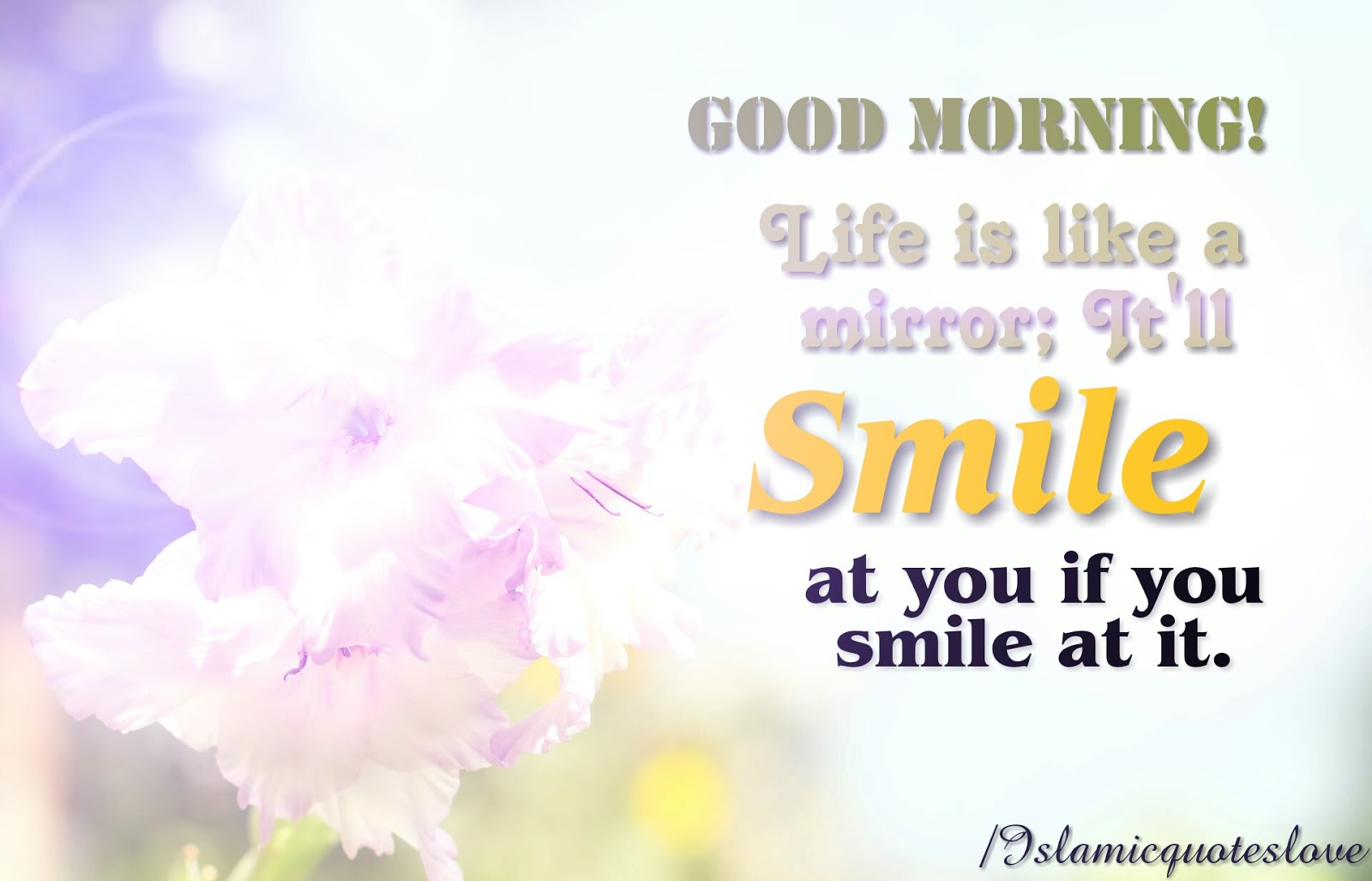 Morning Life Quotes Islamic Quote Good Morning Life Is Like A Mirror It'll Smile At
