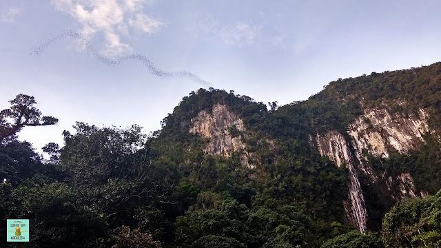 Deer Cave en Parque Nacional del Gunung Mulu (Borneo, Malaysia)