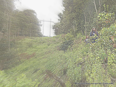 Bajando por el corte lineal sin bosque de la CFE en Cerro Viejo
