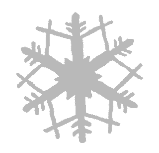 snowflake image winter illustration