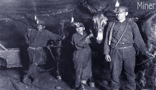 miner occupation