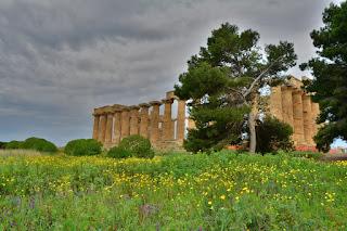 temple d'Héra Sélinonte