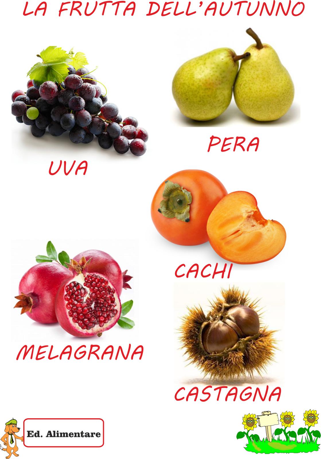 I Frutti Dell Autunno Disegni Da Colorare Disegni Da