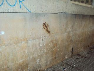 A human hand 'poo-print'