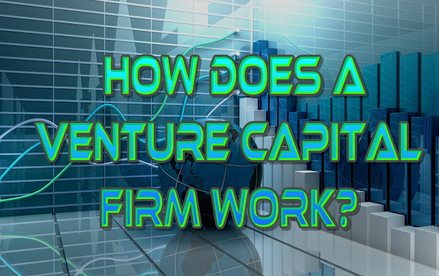 How does a Venture Capital firm work?