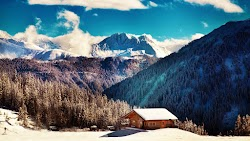 Winter Nature in Tirol