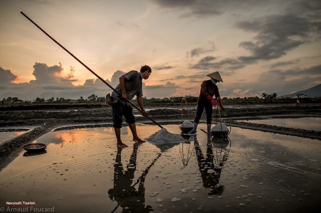 The salt fields near Van Phong Bay, Khanh Hoa province 4