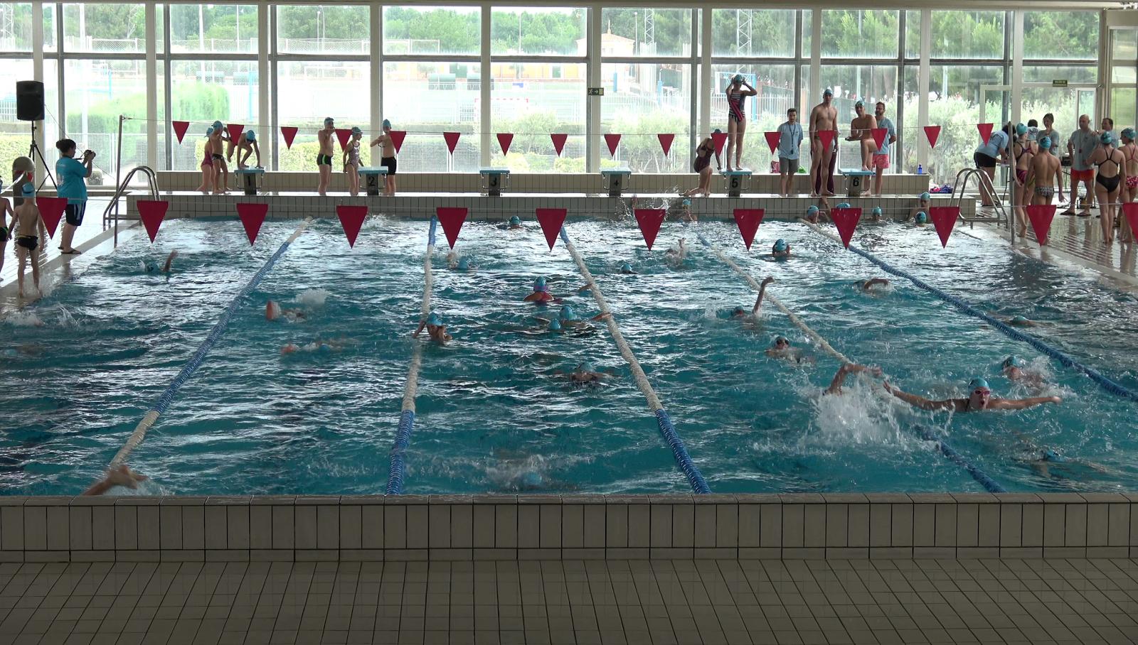 Campeonato de nataci n en el centro municipal de nataci n san fernando de henares san fernando - Piscina san fernando de henares ...