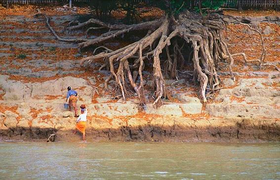 Ayeyarwady River Life