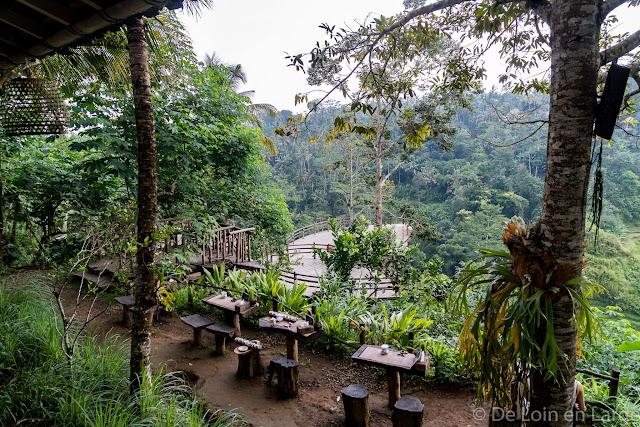 Bali Pulina - Tegallalang - Ubud - Bali