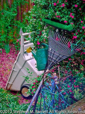 4 Steps to Whipping Your Flowerbeds into Shape for Spring