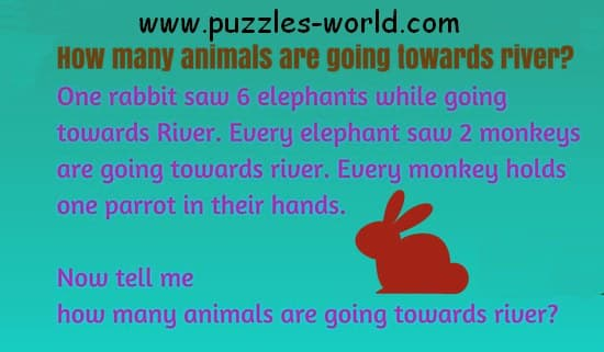 One Rabbit saw 6 Elephants while going towards river