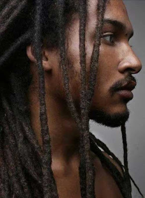 Dreadlocks with Black Hairstyle