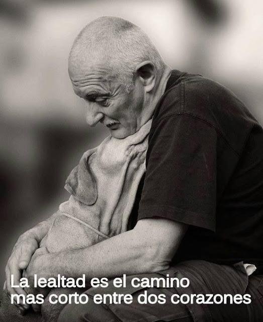 """""""Lealtad"""""""