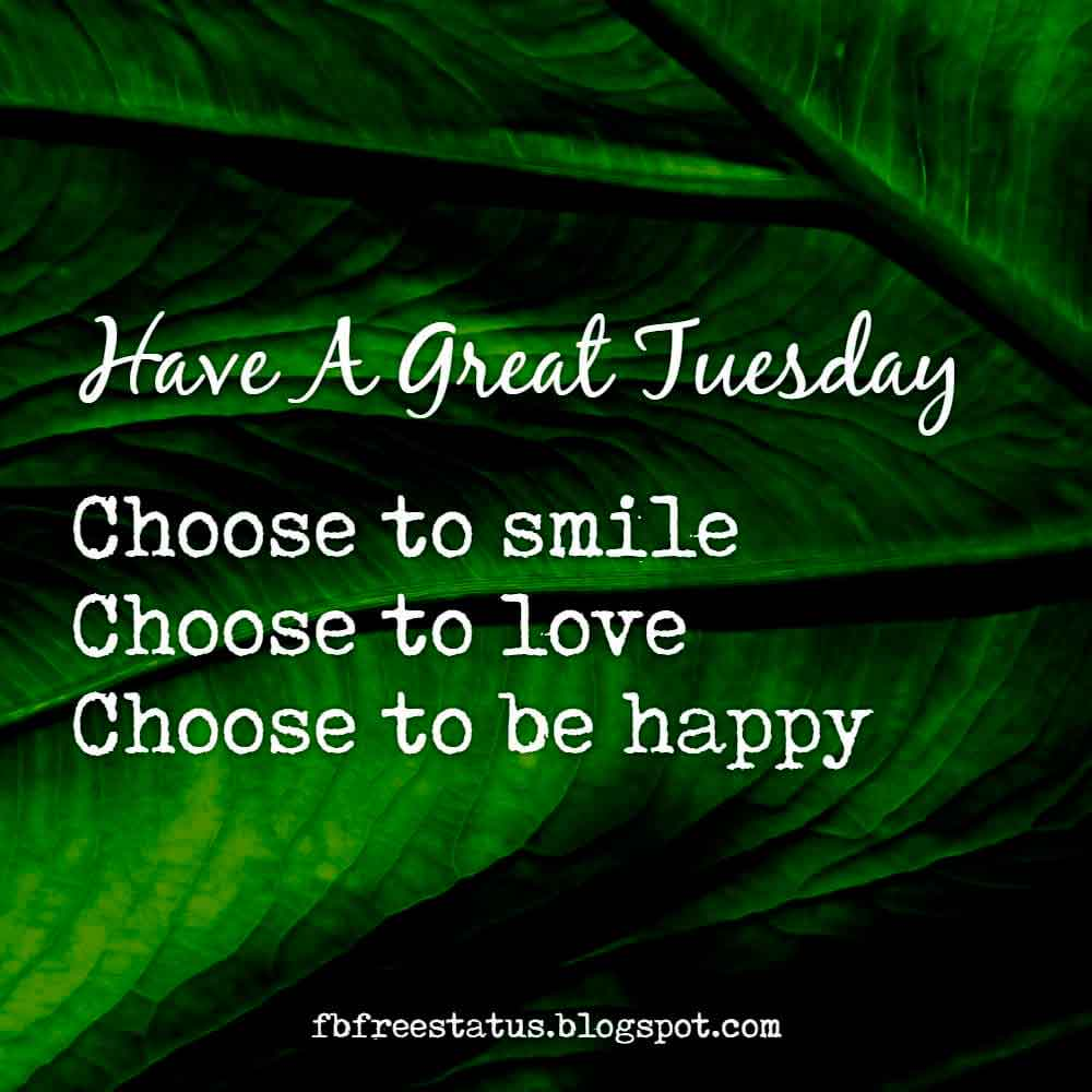 Have great Tuesday, choose to smile, choose to love, choose to be happy, have a Wonderful Tuesday.