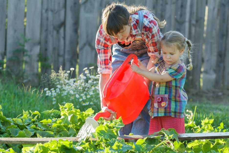 How to Make an Organic Gardening at Home