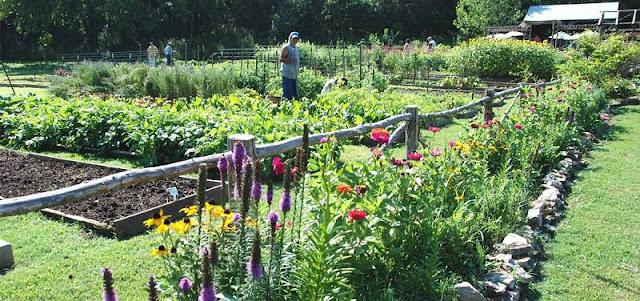 1,3 εκ. στην Ήπειρο για βιολογικές καλλιέργειες