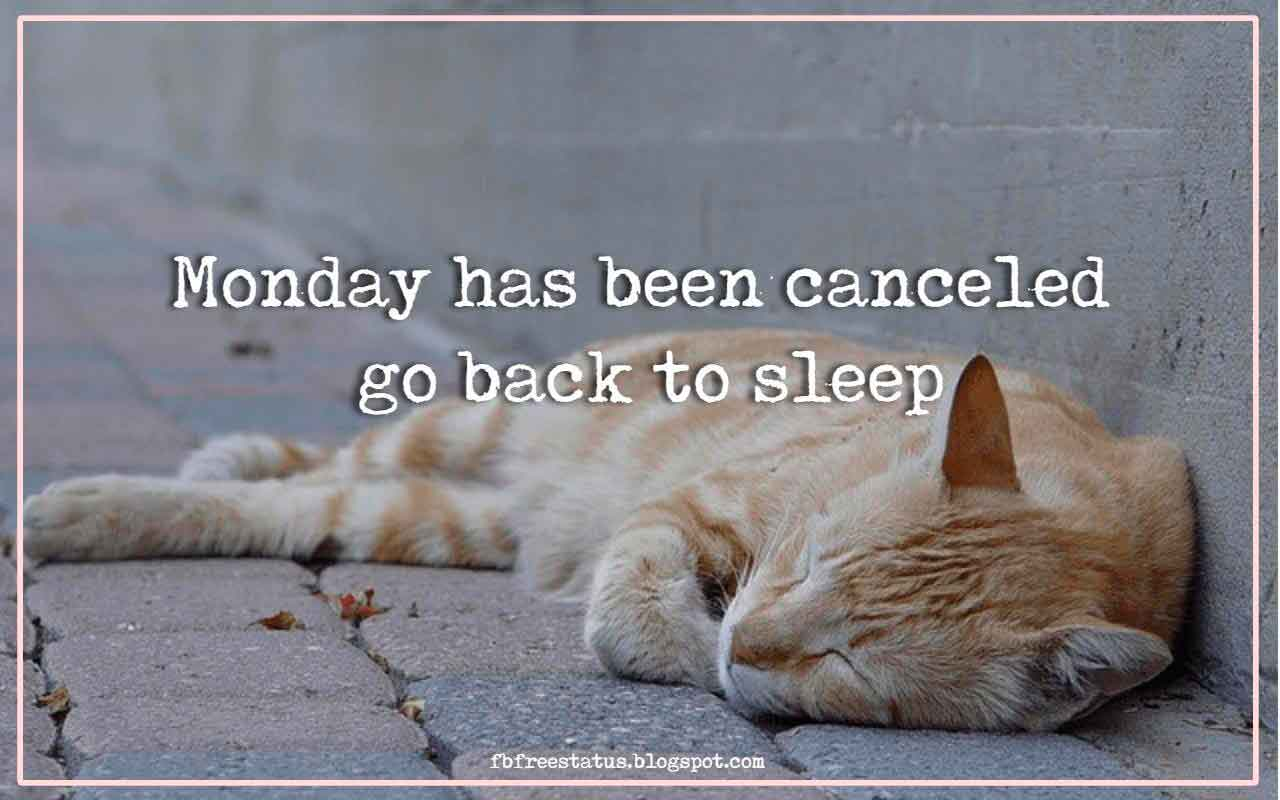 Monday has been canceled go back to sleep.