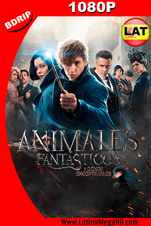 Animales Fantásticos y Dónde Encontrarlos (2016) Latino HD BDRIP 1080P ()