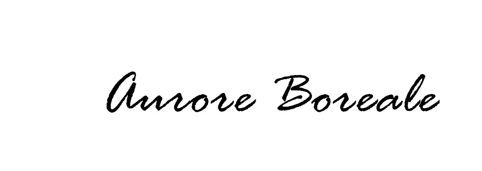 Aurore Boreale - Blog mode Toulouse