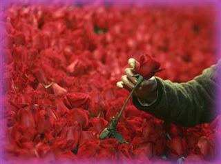 পাকিস্তানে ভ্যালেন্টাইন্স ডে নিষিদ্ধ Valentines Day in Pakistan