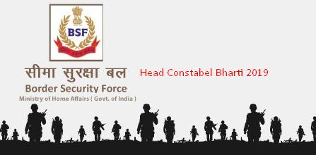 BSF Constable