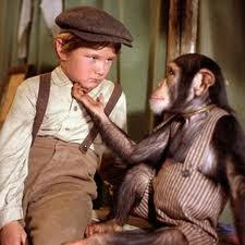 Toby Tyler diez semanas en un circo (1960) - Imagen